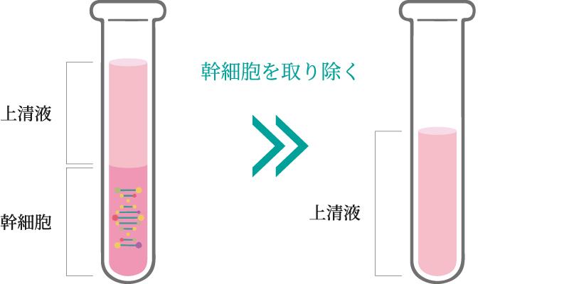 幹細胞培養イメージ